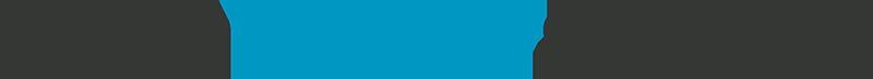 OpenNebulaSystems_Schriftzug_Kurven_800px